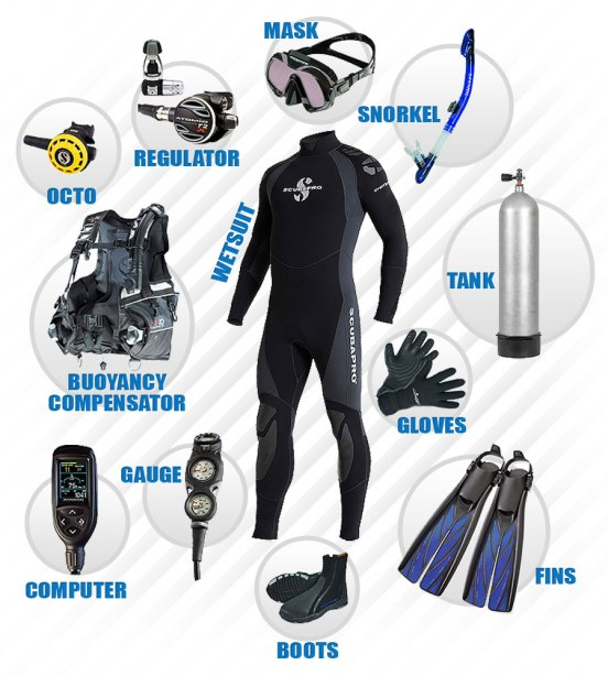 What equipment do you need to start diving?